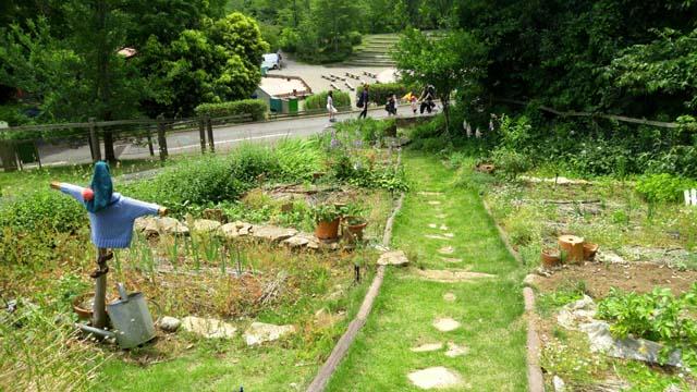 埼玉こども動物自然公園-マクレガーさんの庭
